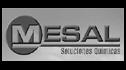 logo de Soluciones Quimicas Mesal