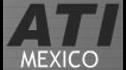 logo de Auto Transportes Internacionales