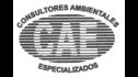 logo de Consultores Ambietales Especializados