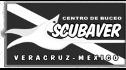 logo de Servicios Subacuaticos del Golfo