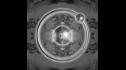 logo de Plata Coloidal Estable Laboratorios